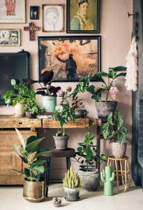 deco-home-fruehlingsdeko-zimmerpflanzen-isabelle-mcallister